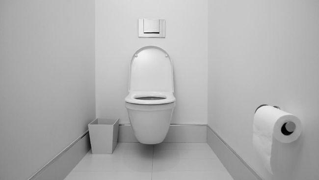 Pentingnya Kebersihan Toilet Untuk Kesehatan